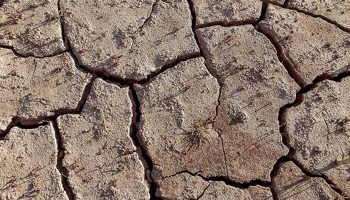 Une terre qui manque d'eau